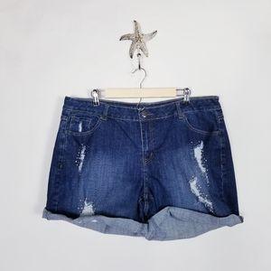 Lane Bryant size 20 Roll Cuff Shorts Distressed